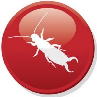 pest-center-icon-61